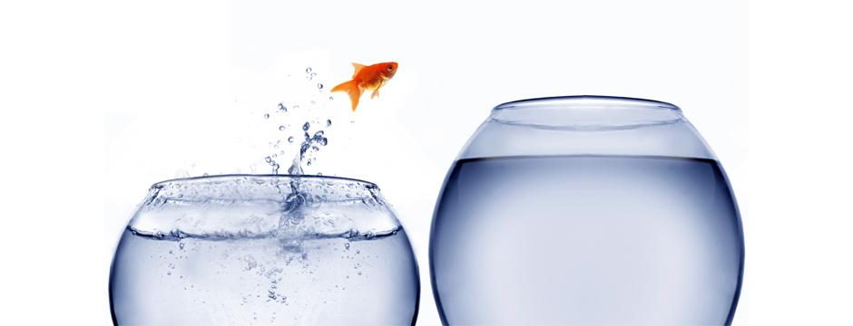 La Terapia Breve Estratégica: un horizonte más amplio