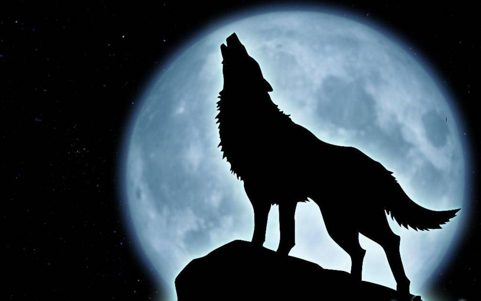 El miedo a la oscuridad en la edad adulta. El miedo convertido en pánico.